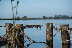 Rustig uitzicht over het water van Anton Van Beek
