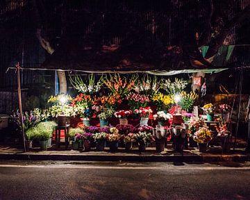 Bloemenstal bij nacht 1 van Leonie Broekstra