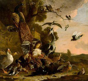 Melchior d' Hondecoeter, De raaf wordt beroofd van de veren waarmee hij zich had getooid