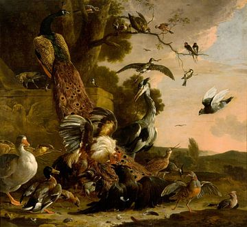 De raaf wordt beroofd van de veren waarmee hij zich had getooid, Melchior d' Hondecoeter