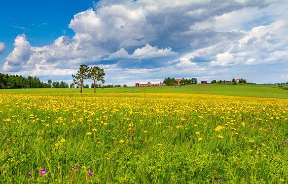 Lente in Zweden