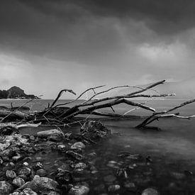 Storm is here.  van Bram van Kattenbroek