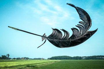 Veer in de wind sur Wybrich Warns