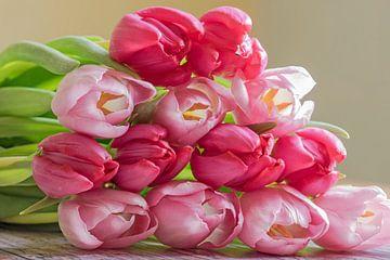 Ein Strauß von Tulpen von Katrin May