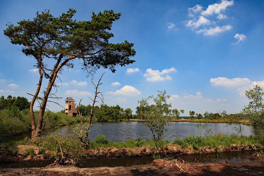 Turnhouts Vennengebied von Ludo Verhoeven