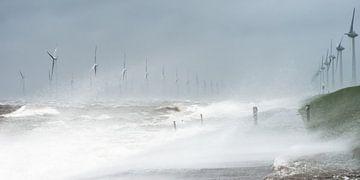 Storm raast over Nederland van Jenco van Zalk