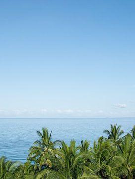 Palmbomen en uitzicht op zee