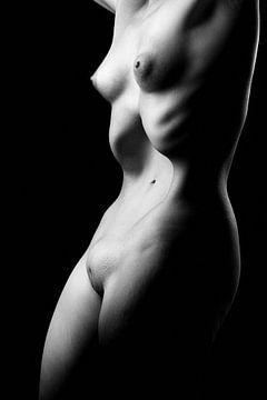 Nahaufnahme eines schönen nackten Frauenkörpers von william langeveld