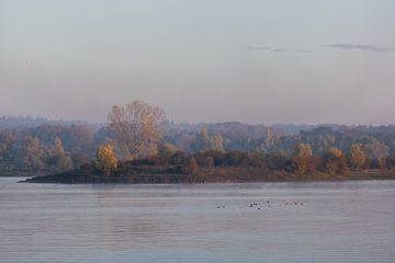 Herbstblick über den See von Tania Perneel