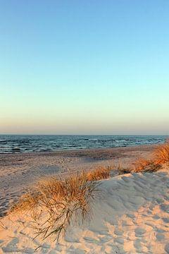 dunis van Ostsee Bilder