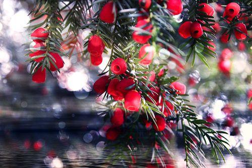rote Naturperlen van Dagmar Marina