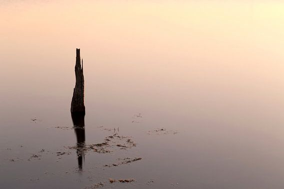 Reflectie..