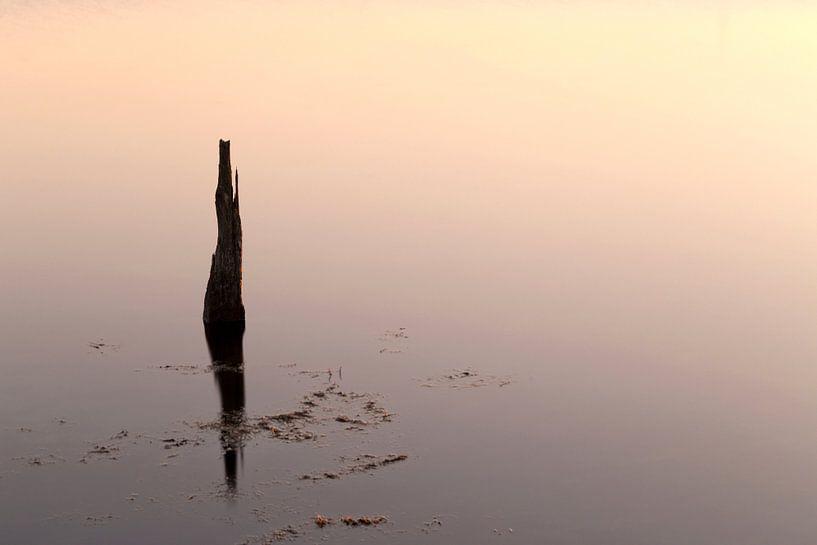 Reflectie.. van Miranda van Hulst
