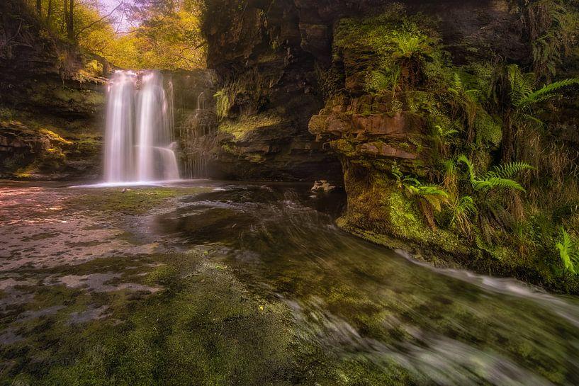 A stream of living water van Sander Poppe