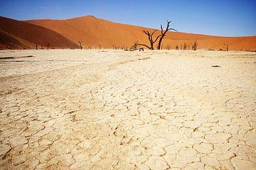 Sossusvlei, Namibie von Rik Engelgeer