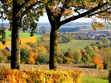 Uitzicht vanaf Gulperberg van Harrie Beuken