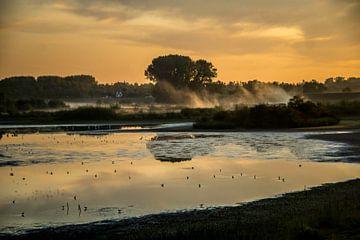 Sonnenaufgang Ooijpolder mit Nebel von Cocky Anderson