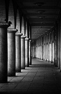 Dresden van Silke R.
