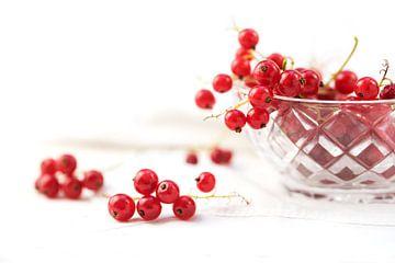 mooie rode bessen uit de tuin in een glazen schaal en op tafel, achtergrond met kopieerruimte vervaa van Maren Winter