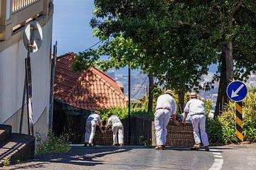 Korbschlittenfahrt auf Madeira von Werner Dieterich