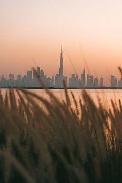 Die Skyline von Dubai mit Burj Khalifa, gesehen durch das Strandhafergras mit orangefarbenem Himmel