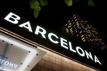 Groeten uit Barcelona...! van Maurice Moeliker