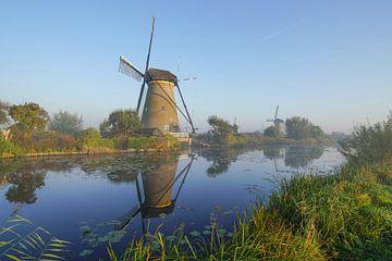 Een prachtige morgen bij Kinderdijk en zijn molens van