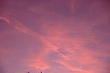 Der rosa Himmel, den alle lieben. von Sanne Van der avoird
