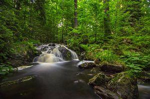 waterfall at Harz Mountain van
