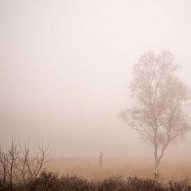 Eenzame berk in de mist van Cindy Arts
