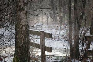 Boslandschap met sneeuw en een hekje van Miranda Geerts
