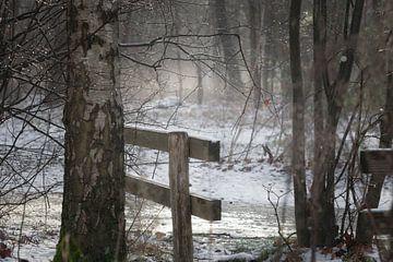 Paysage forestier avec de la neige et une clôture sur Miranda Geerts