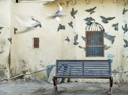 illusies van de straat van Omri Raviv