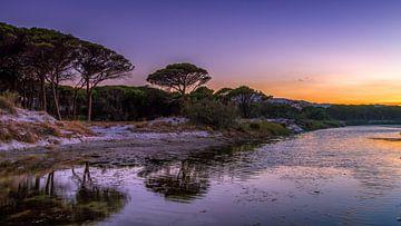Sunset strand van Rene Siebring