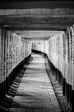 Torii-Tor in Fushimi Inari von Mickéle Godderis