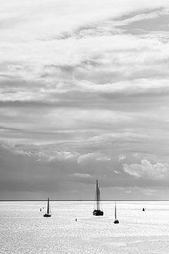 Waddenzee van Damien Franscoise