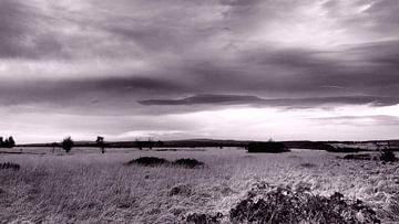 Countryside Hautes des Fagnes van Twan van G.