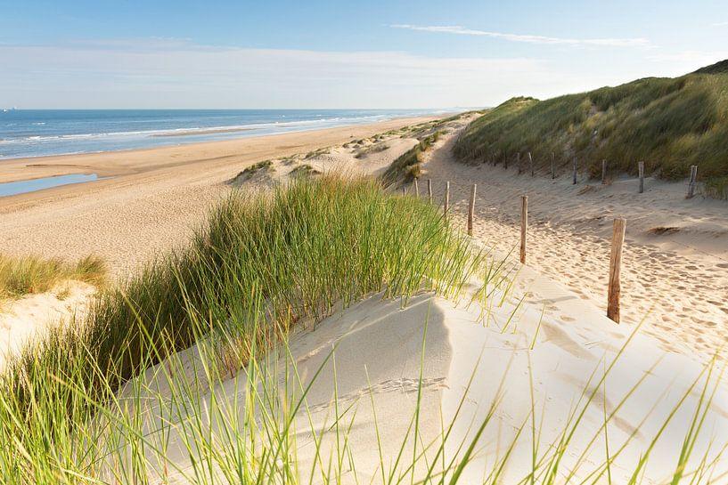 De Hollandse duinen van Monique van Genderen (in2pictures.nl fotografie)