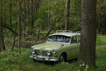 Grün 1, ein Volvo P220 von Herman Peters