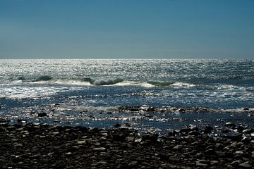 Zee van