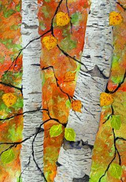 Birken im Herbst von Marion Tenbergen