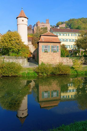 Wertheim with the Tauber River and the Castle van Gisela Scheffbuch