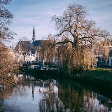 Winter Zwolle 2018 van