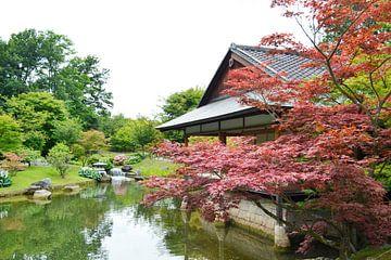 Japanse tuin in Hasselt België van Susan Dekker