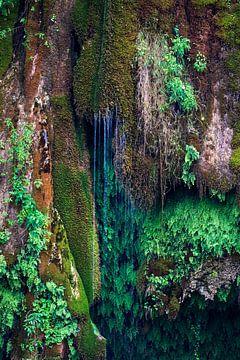 Naturellement Vert sur Anouschka Hendriks