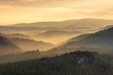 Blick ins Kirnitzschtal in der Sächsischen Schweiz von Michael Valjak
