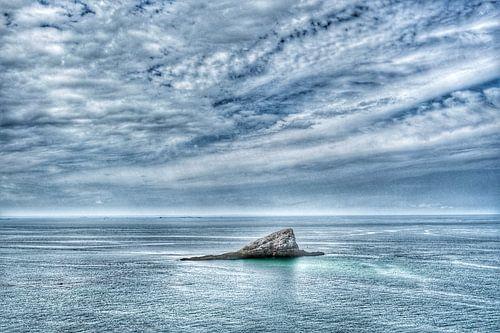 Zee met rots
