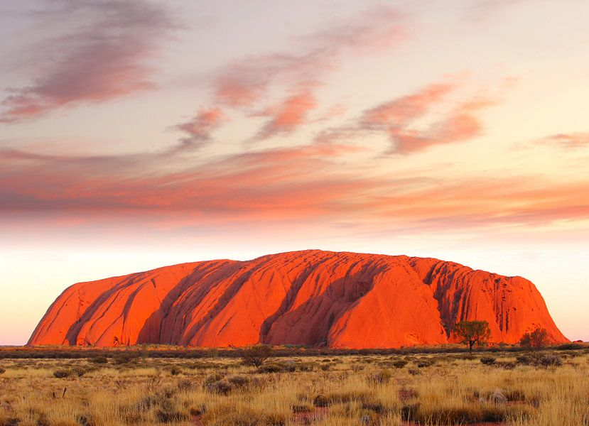 Uluru - Ayers Rock in vuur en vlam, Australië  van Inge Hogenbijl