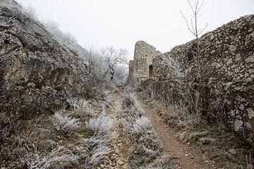 Staatzer Berg mystisch von Elke Wolfbeisser