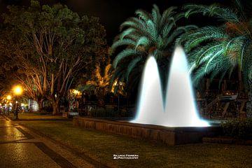 Madeira Funchal city fountain van Ricardo Ferreira